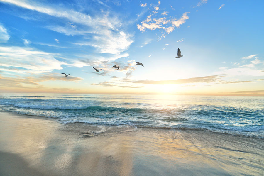 tra il dire e il fare c'è di mezzo il mare